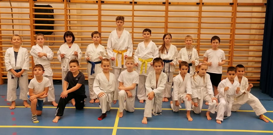 Kyokushin Karate edzés - Nippon Sakura SE. - Budapest.jpg